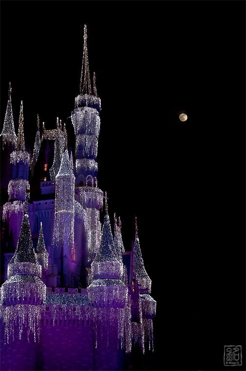 Disney ... where your dreams come true
