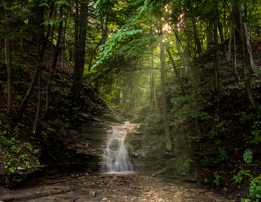 Light the Way - Letchworth State Park