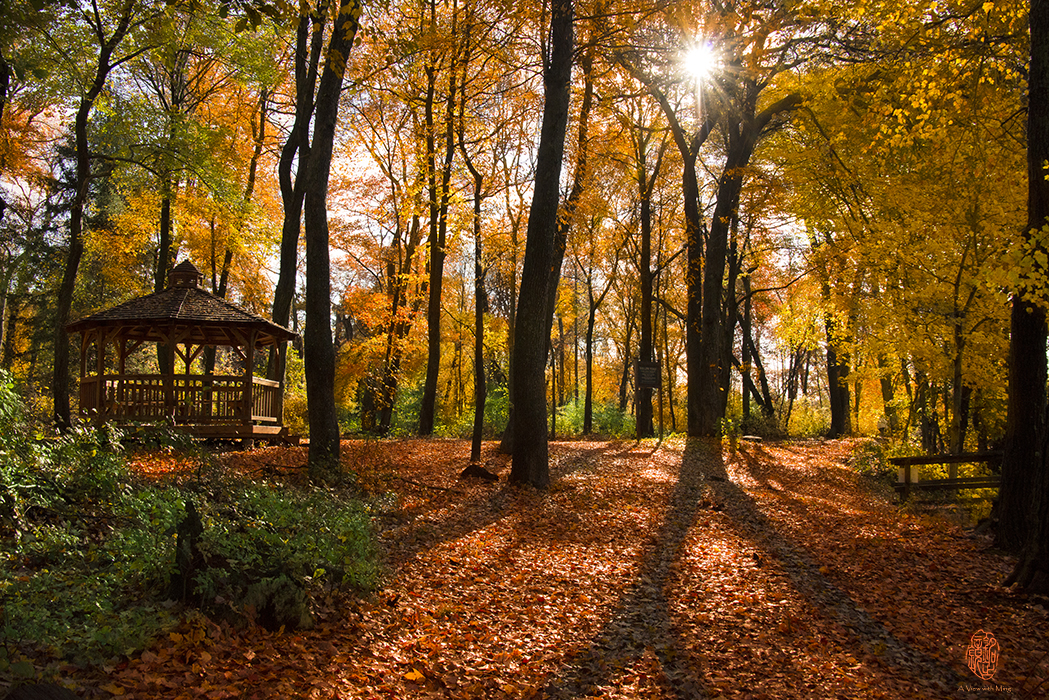 Fall - Caleb Smith State Park